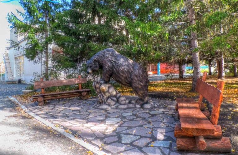 Карагайский бор. Путевки по акции для пенсионеров